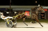 Obrigado Wins Northfield Park's Cleveland Trotting Classic
