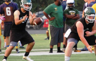 Vic's Corner: Nordonia Football Coach Jeff Fox Reviews 2016 Knights!