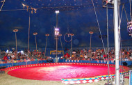 Vic's Corner: The Big Top comes to Northfield! Scenes from the Circus!! (Photo Gallery)