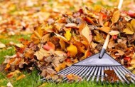 Northfield Village: Leaf Pick up Season Has Ended