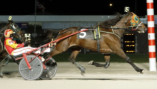 Wind Surfer Posts 50th Career Win at Northfield Park