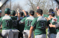 Knights Fend Off The Bees (Boys Baseball)