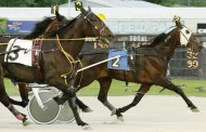 Herbie L Posts 50th Career Win at Northfield Park