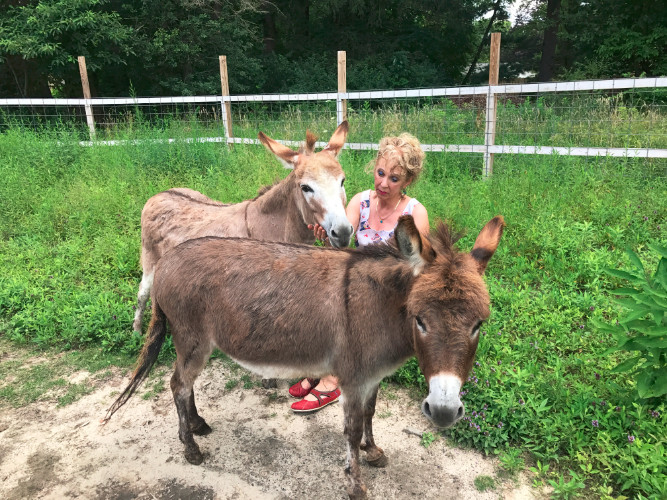 Klassy Kids Farm Fundraiser August 5th 2017 (VIDEO and PHOTOS)