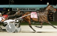 Downbytheseaside Slays the Dragon in Saturday's Carl Milstein Memorial at Northfield Park
