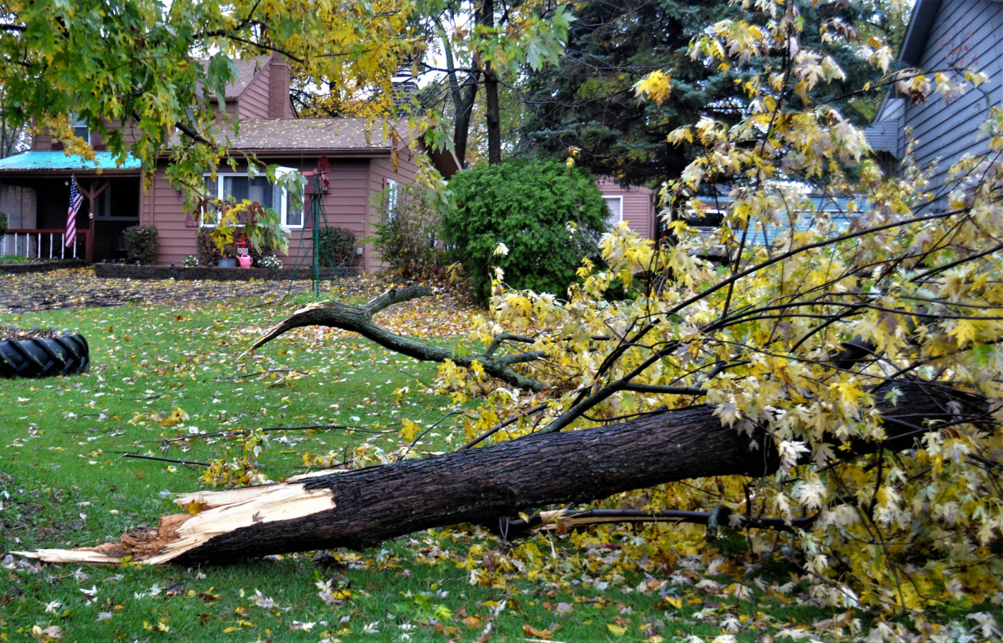 Vic's Corner: Storm Damage Northfield Village - Last night and this morning