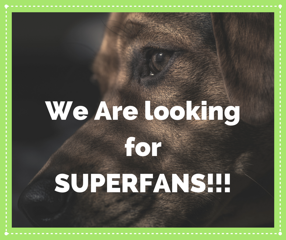 We are looking for SUPERFANS