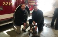 Macedonia Fire Department Receive Donations To Save Pets From Fire (PHOTOS)