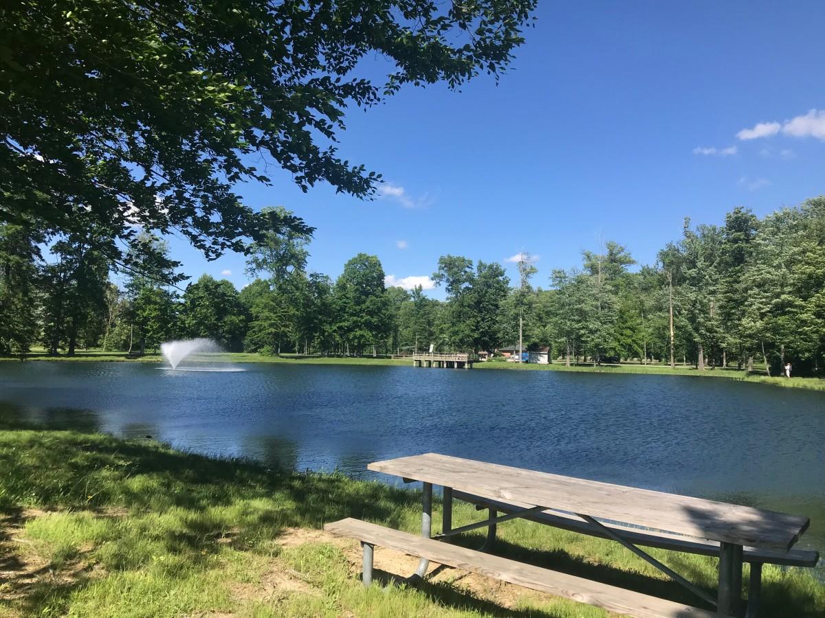 How the Lake at Longwood Park Got Built