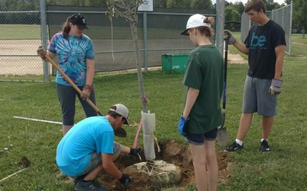 Letter to the Editor: Eagle Project Completed-Sagamore Park Trees
