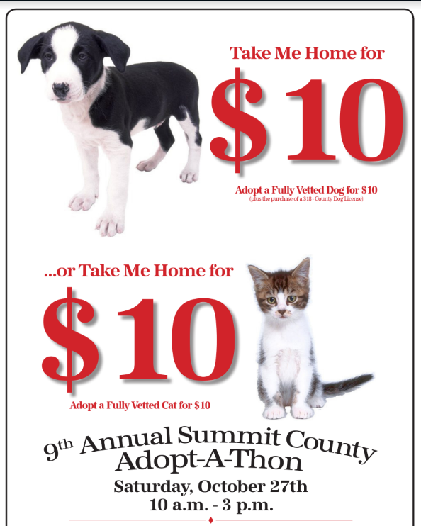 Summit County to Hold Annual Fall Adopt-A-Thon on October 27, 2018