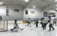 Hockey Snippets: Video and Scores