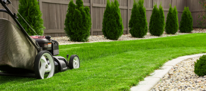 prepare your lawn for screen featured image